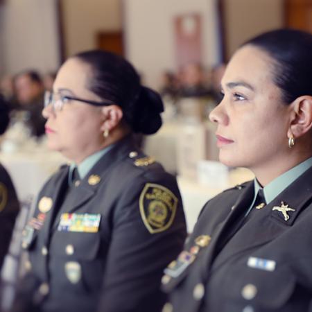 Diplomado en gestión estratégica del servicio de policía (GESEP)